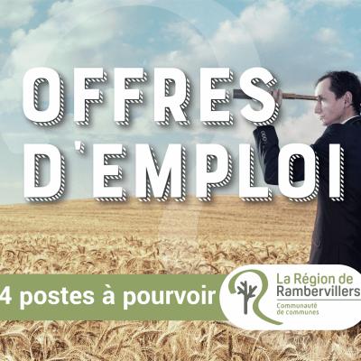 # OFFRES D'EMPLOI