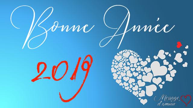 Bonne-année-2019-COCCIfil